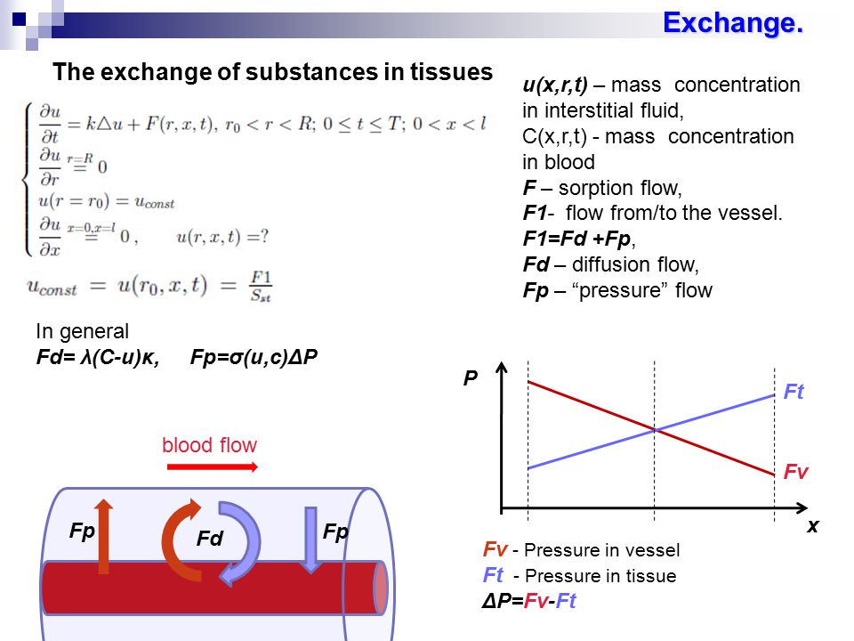 The exchange of substances in tissues