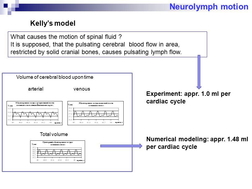Neurolymph motion Kelly's model