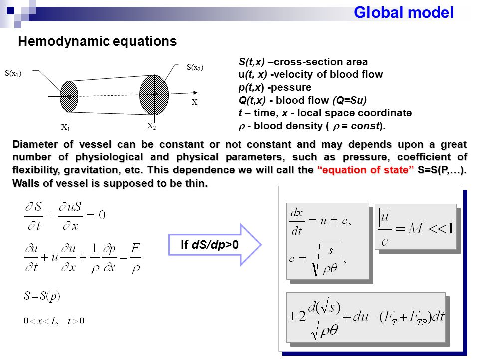 Global model Hemodynamic equations If dS/dp>0