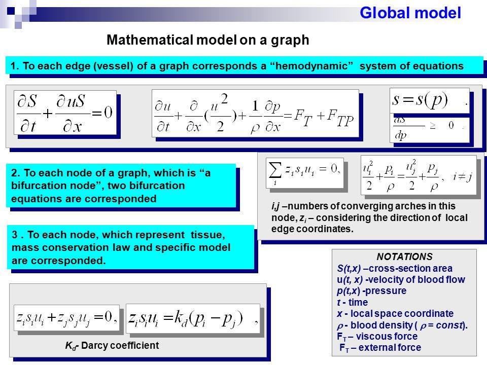 Mathematical model on a graph