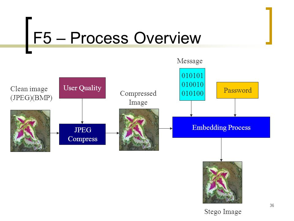 F5 – Process Overview Message 010101 010010 010100 User Quality