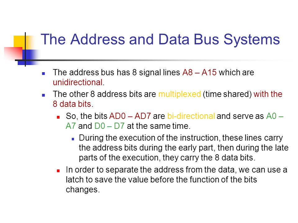 The Address and Data Bus Systems