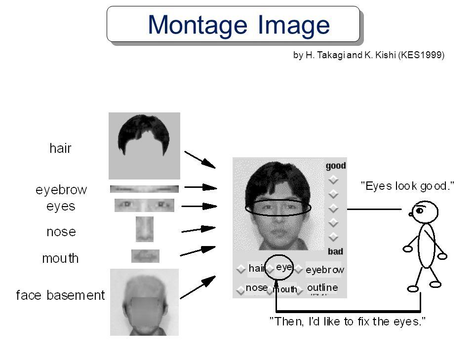 Montage Image by H. Takagi and K. Kishi (KES1999)