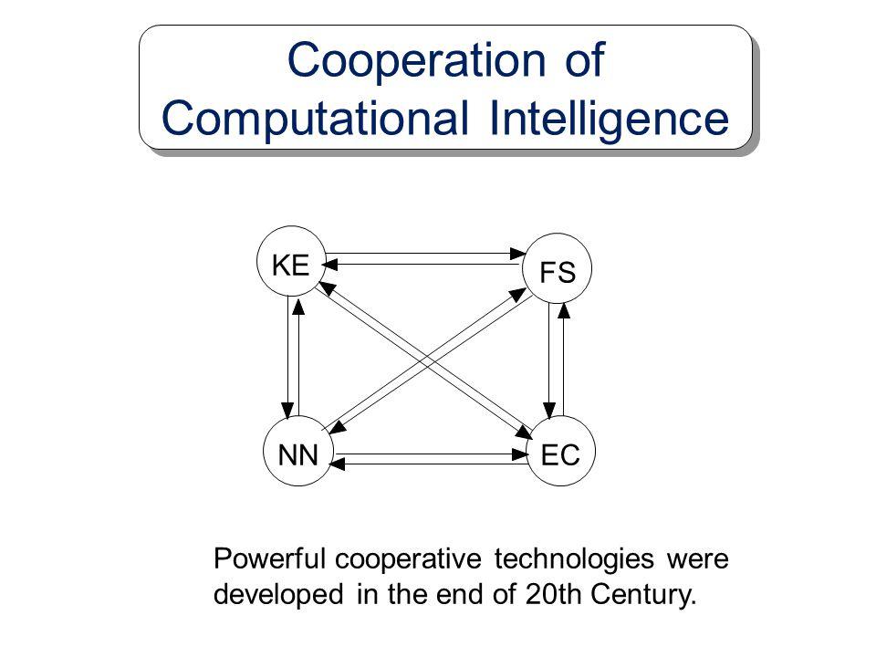 Cooperation of Computational Intelligence