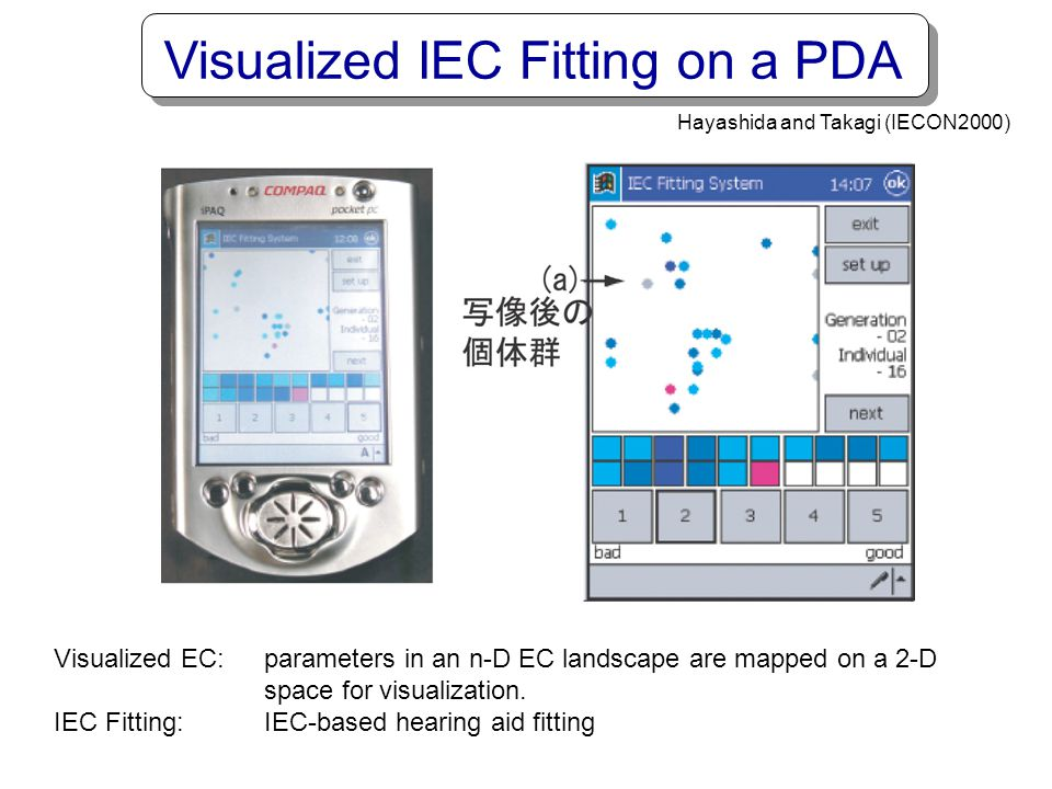 Visualized IEC Fitting on a PDA