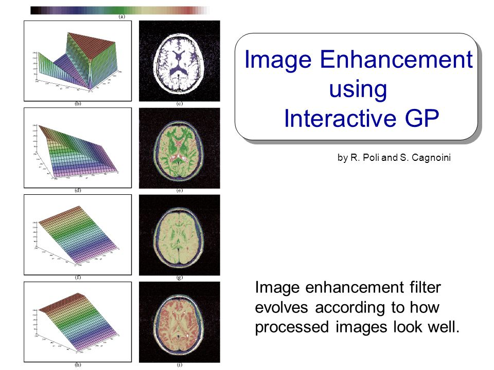 Image Enhancement using Interactive GP