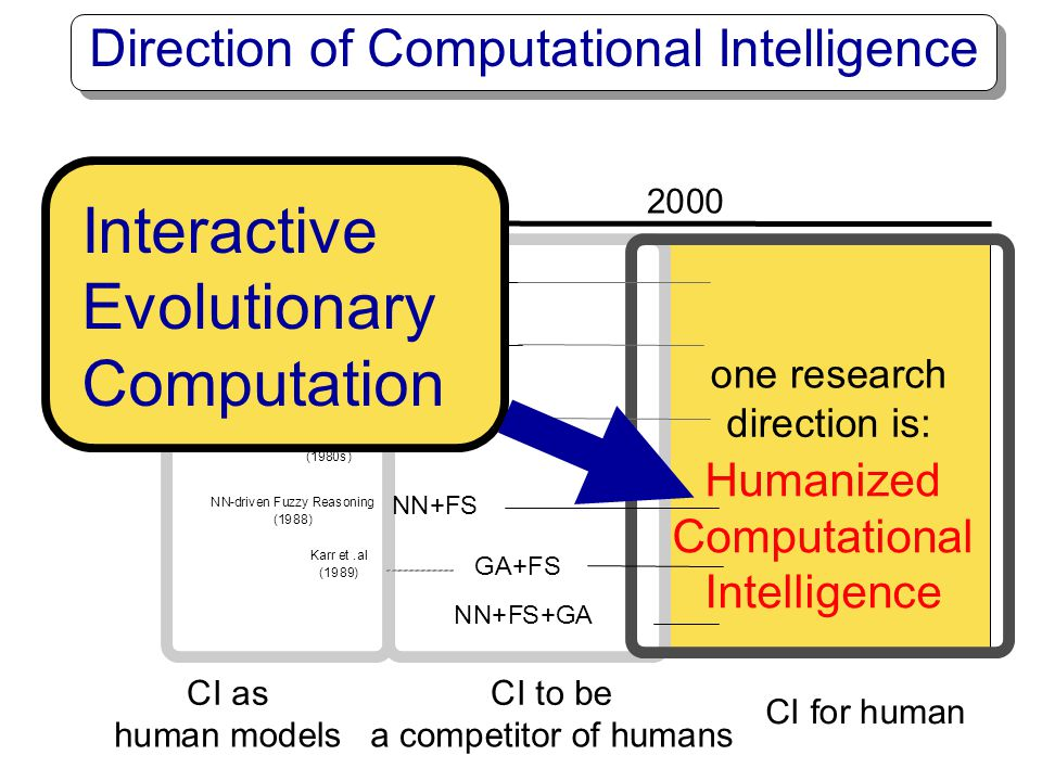 Direction of Computational Intelligence