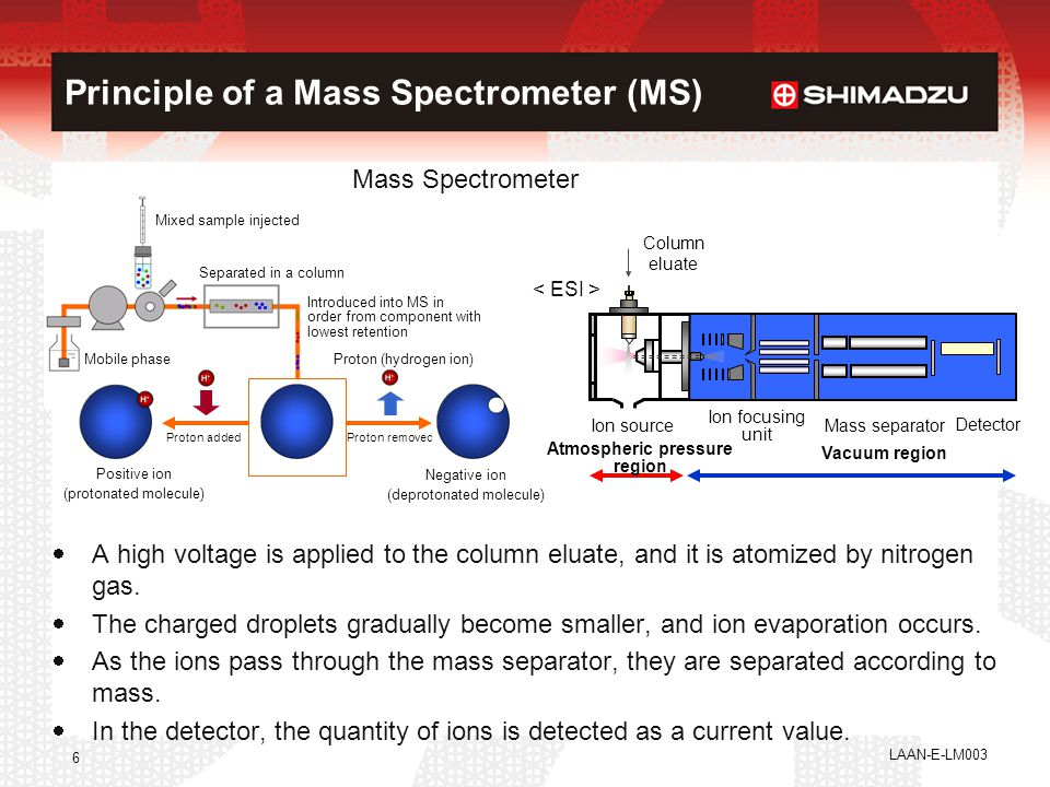 Principle of a Mass Spectrometer (MS)