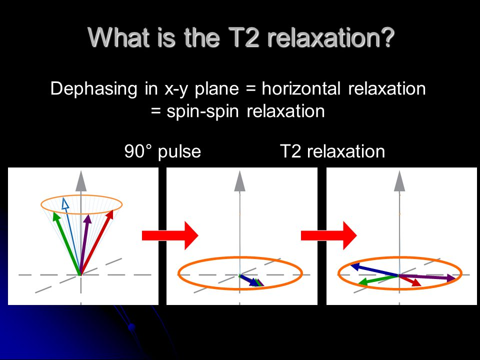 What is the T2 relaxation