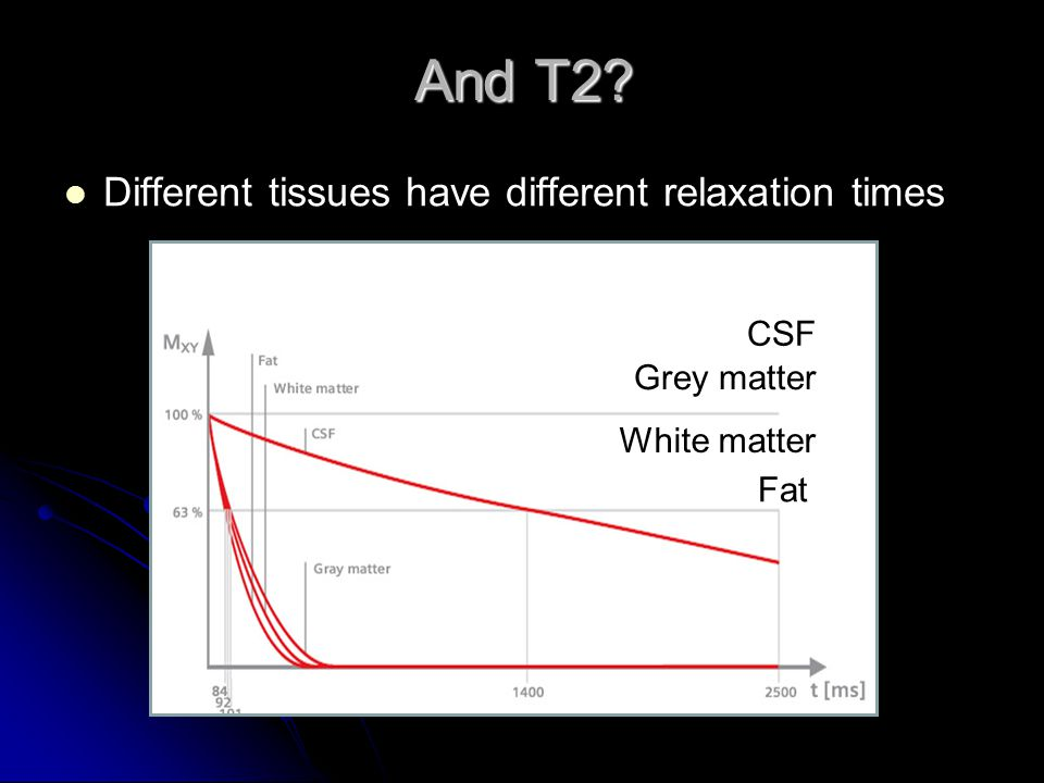 And T2 Different tissues have different relaxation times CSF