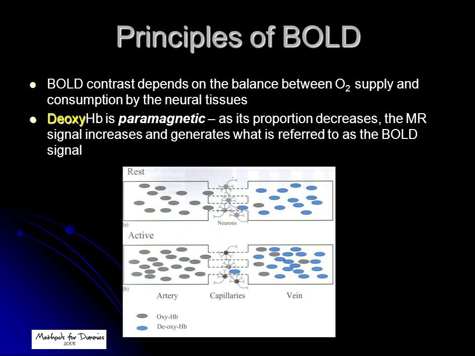 Principles of BOLD BOLD contrast depends on the balance between O2 supply and consumption by the neural tissues.