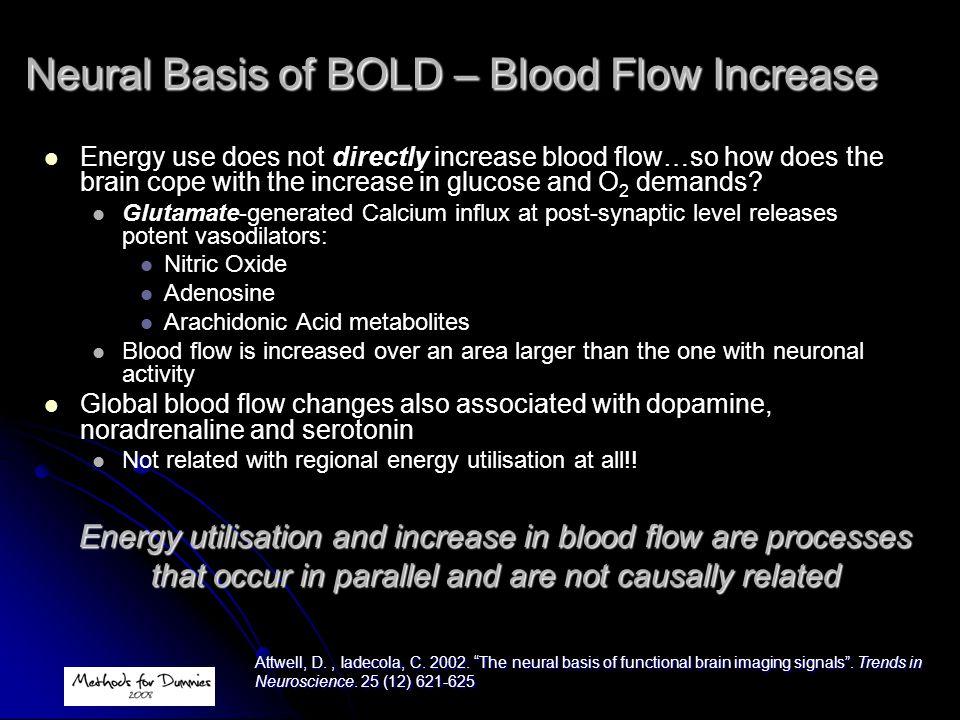 Neural Basis of BOLD – Blood Flow Increase