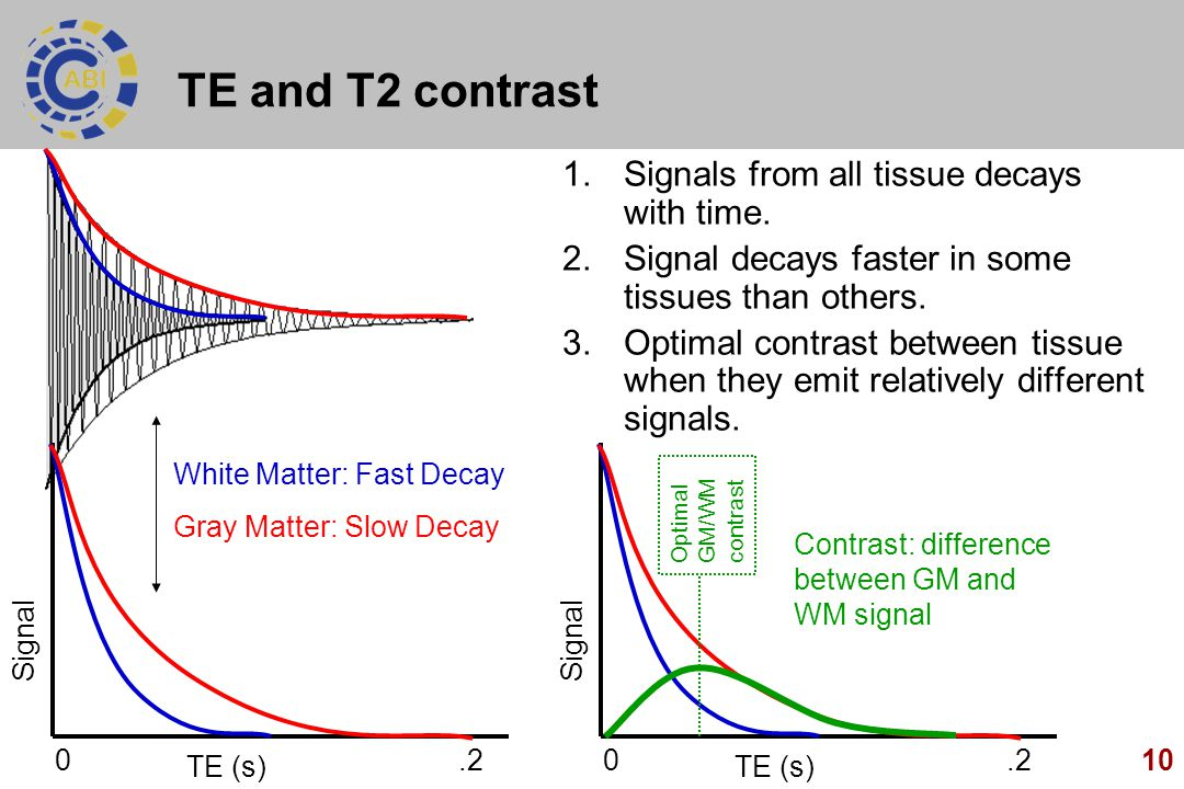 TE and T2 contrast Signals from all tissue decays with time.