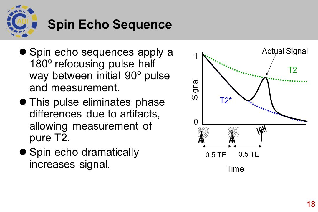 Spin Echo Sequence Spin echo sequences apply a 180º refocusing pulse half way between initial 90º pulse and measurement.