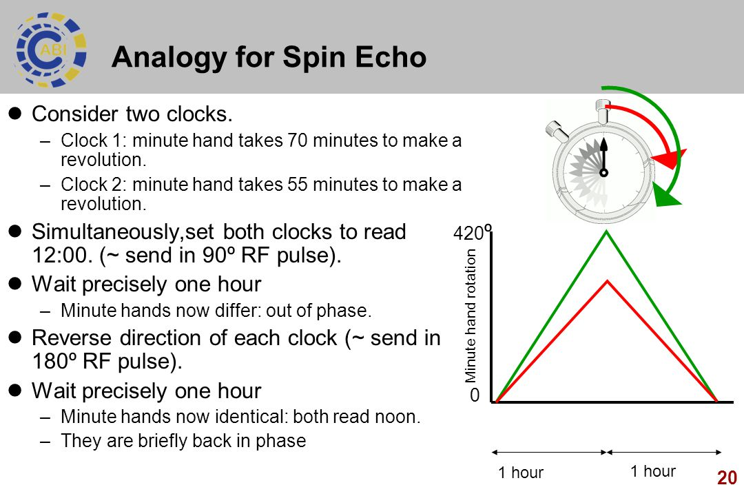 Analogy for Spin Echo Consider two clocks.