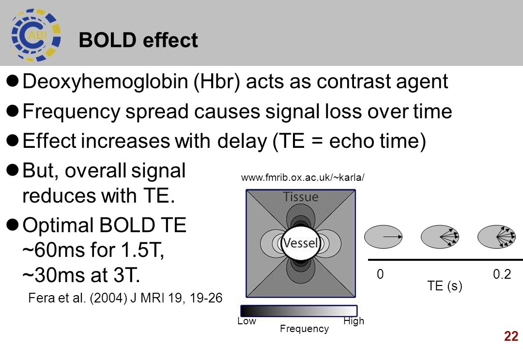 Deoxyhemoglobin (Hbr) acts as contrast agent