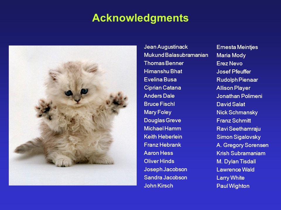 Acknowledgments Jean Augustinack Ernesta Meintjes