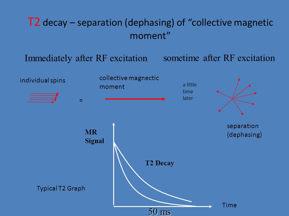 T2 decay – separation (dephasing) of collective magnetic moment