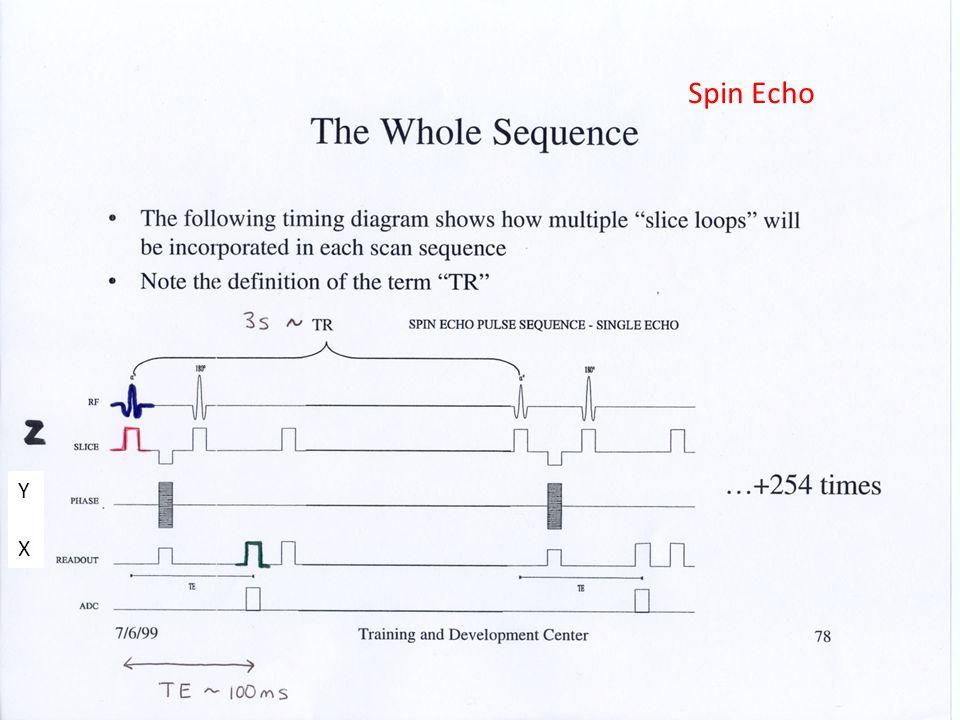 Spin Echo Y X