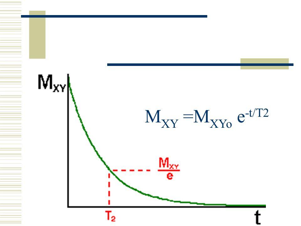 MXY =MXYo e-t/T2