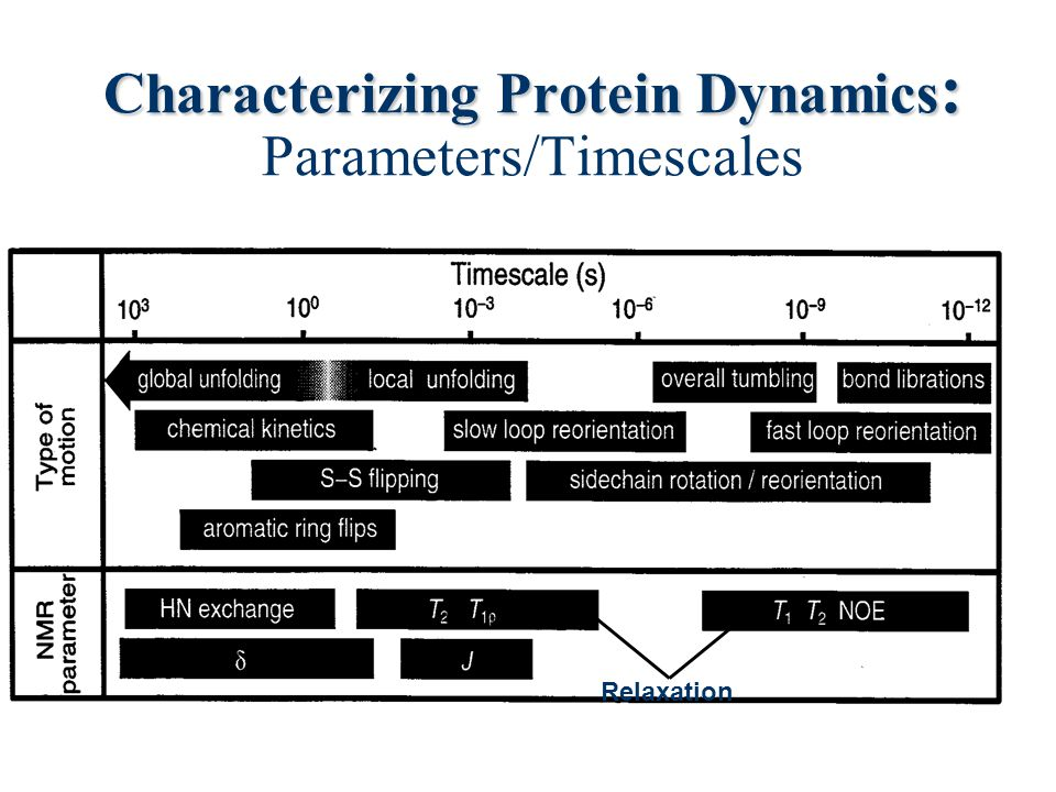 Characterizing Protein Dynamics: Parameters/Timescales