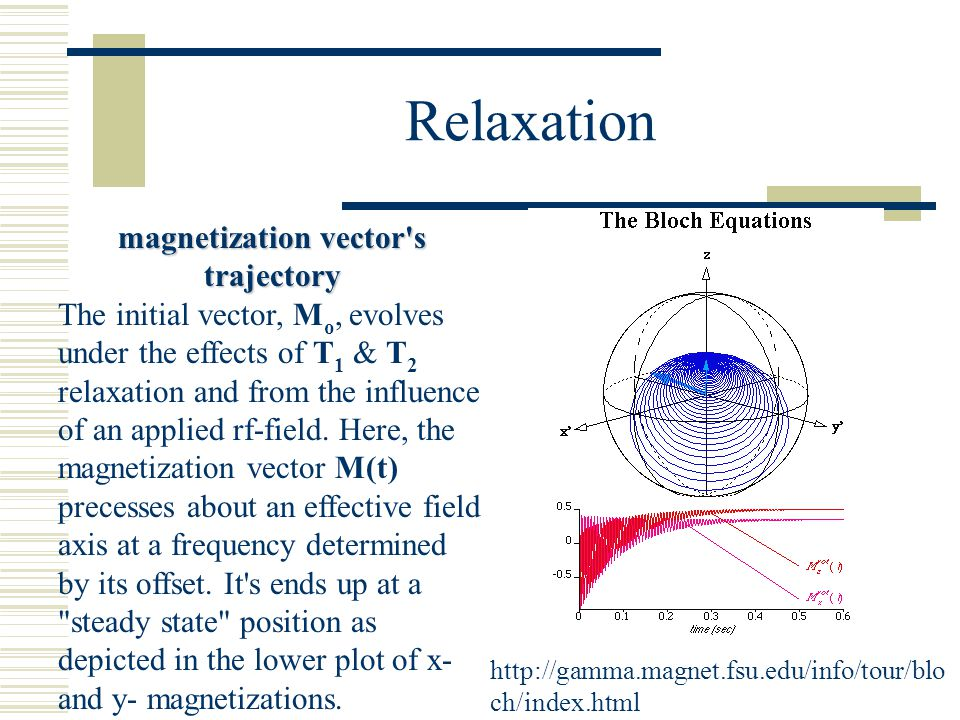 magnetization vector s trajectory