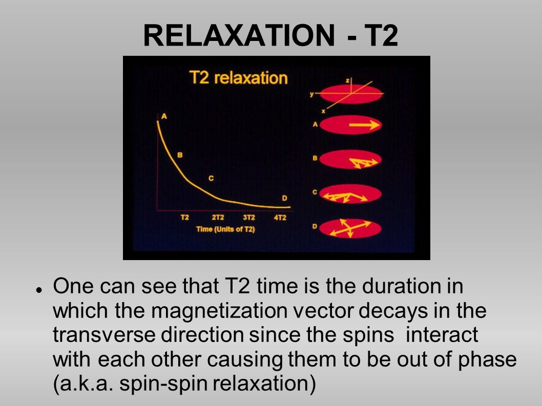RELAXATION - T2