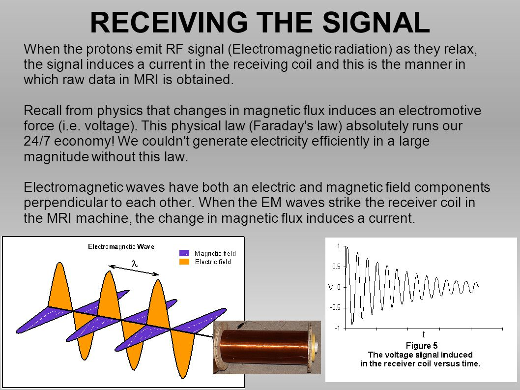 RECEIVING THE SIGNAL When the protons emit RF signal (Electromagnetic radiation) as they relax,