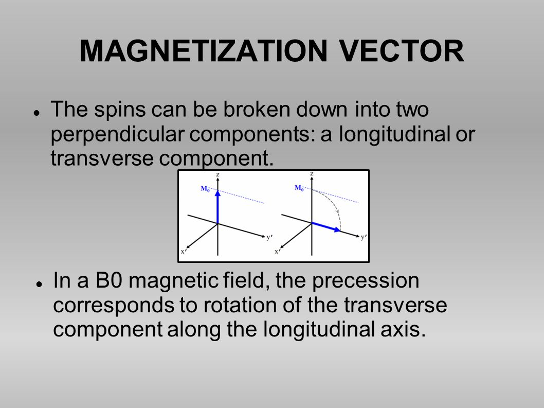 MAGNETIZATION VECTOR The spins can be broken down into two perpendicular components: a longitudinal or transverse component.
