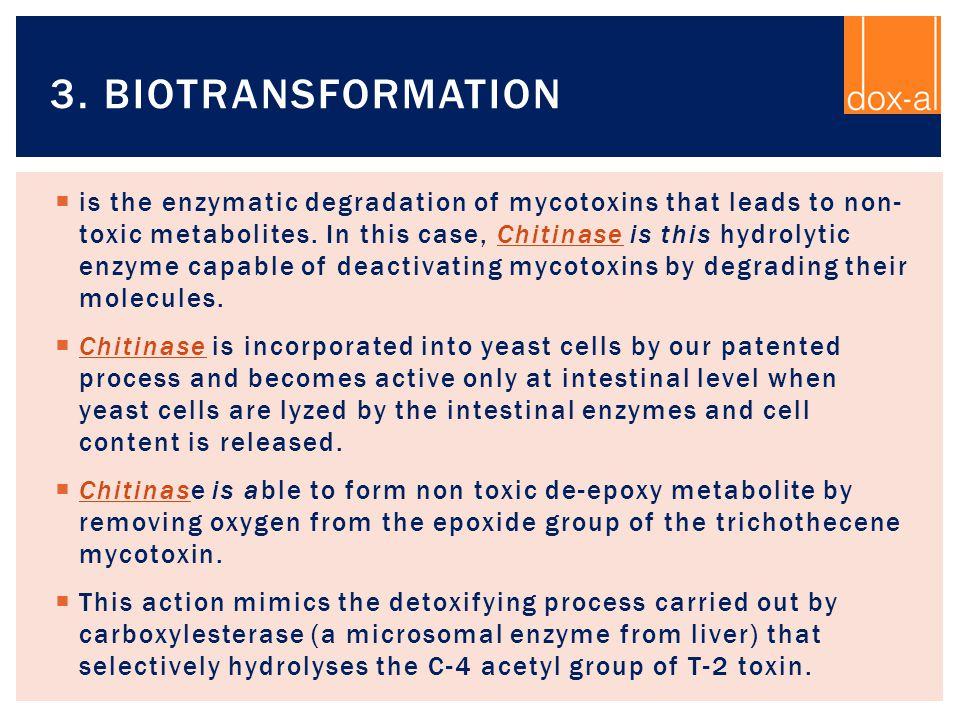 3. Biotransformation