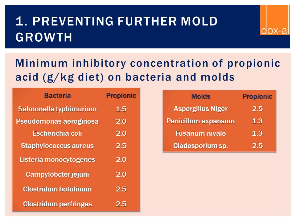 1. Preventing further mold growth