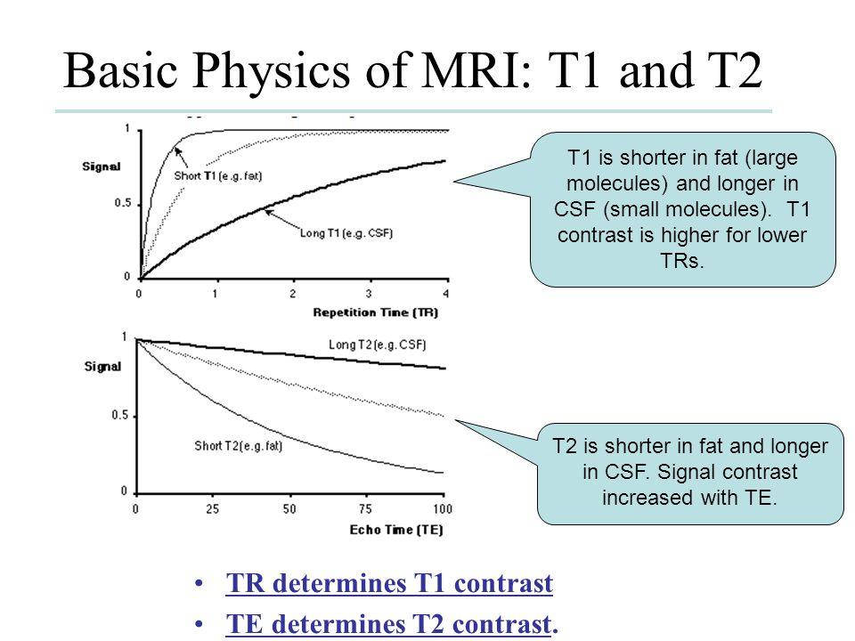 Basic Physics of MRI: T1 and T2