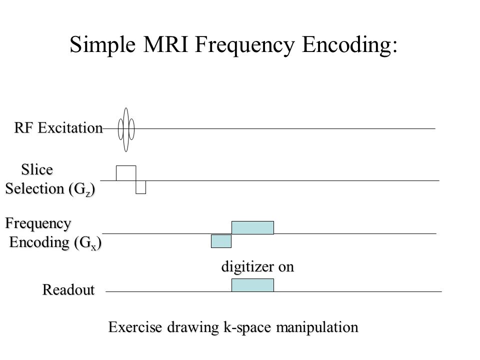 Simple MRI Frequency Encoding:
