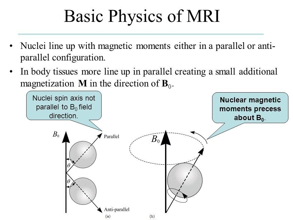 Basic Physics of MRI Nuclei line up with magnetic moments either in a parallel or anti-parallel configuration.