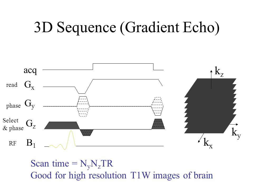 3D Sequence (Gradient Echo)