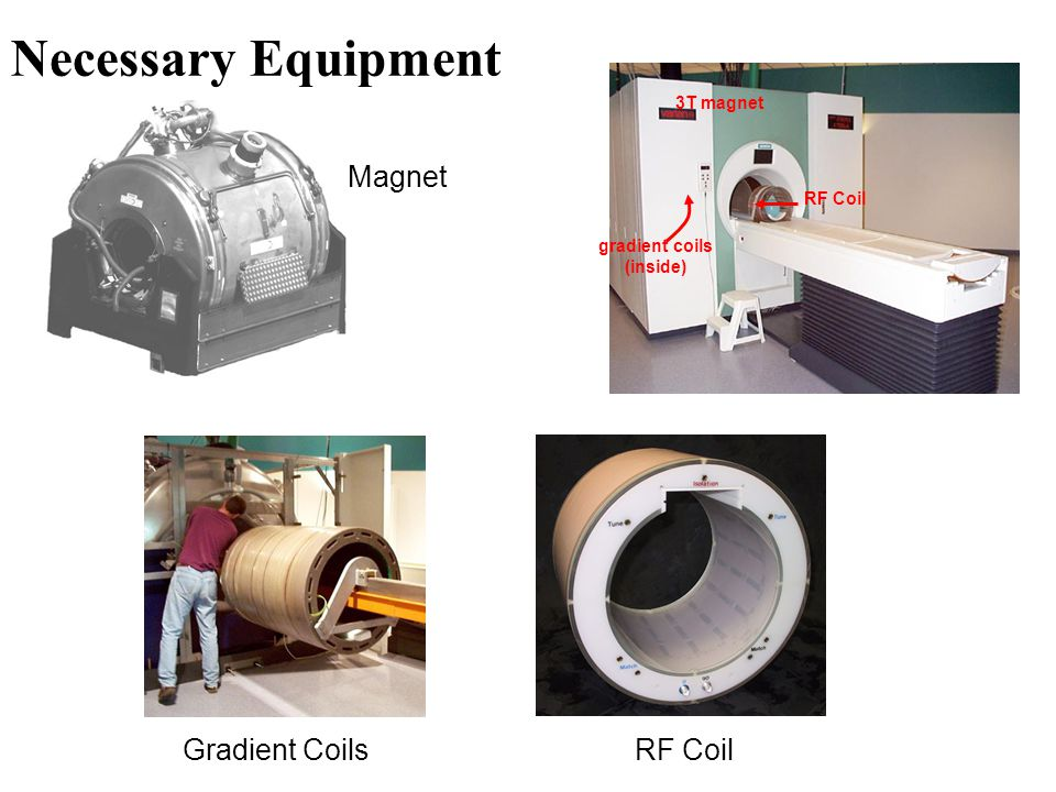 Necessary Equipment Magnet Gradient Coils RF Coil 3T magnet RF Coil