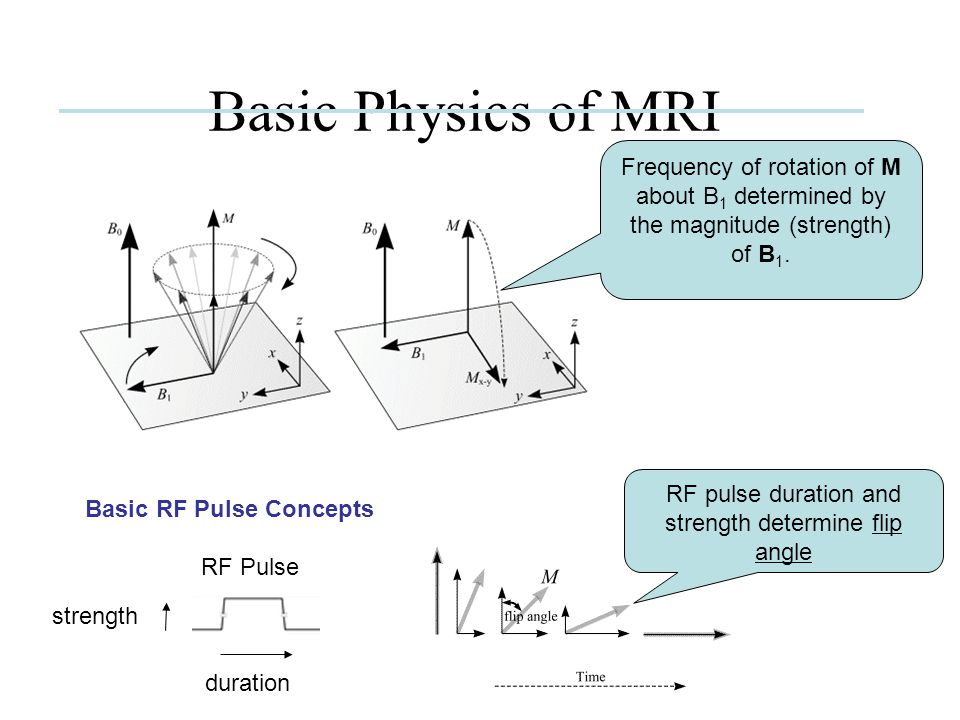 RF pulse duration and strength determine flip angle