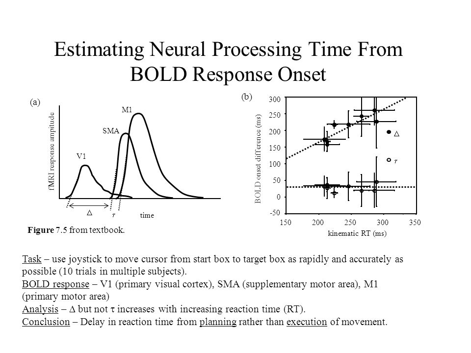 Estimating Neural Processing Time From BOLD Response Onset