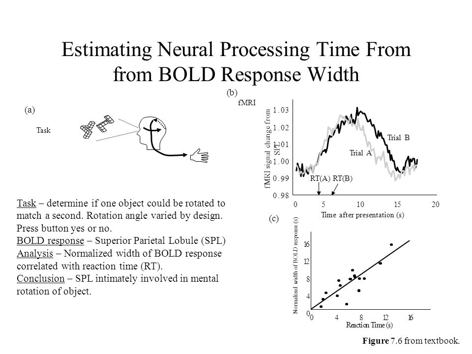 Estimating Neural Processing Time From from BOLD Response Width