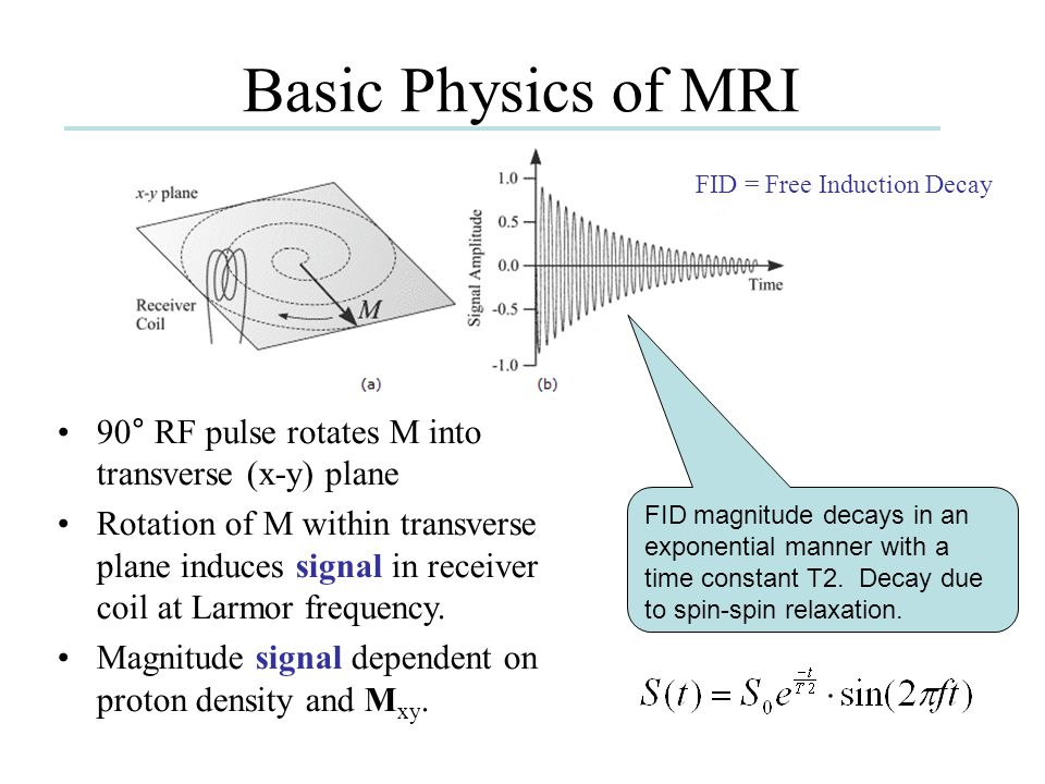 Basic Physics of MRI FID = Free Induction Decay. 90° RF pulse rotates M into transverse (x-y) plane.