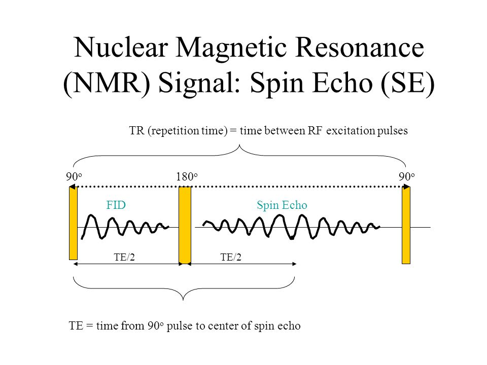 Nuclear Magnetic Resonance (NMR) Signal: Spin Echo (SE)