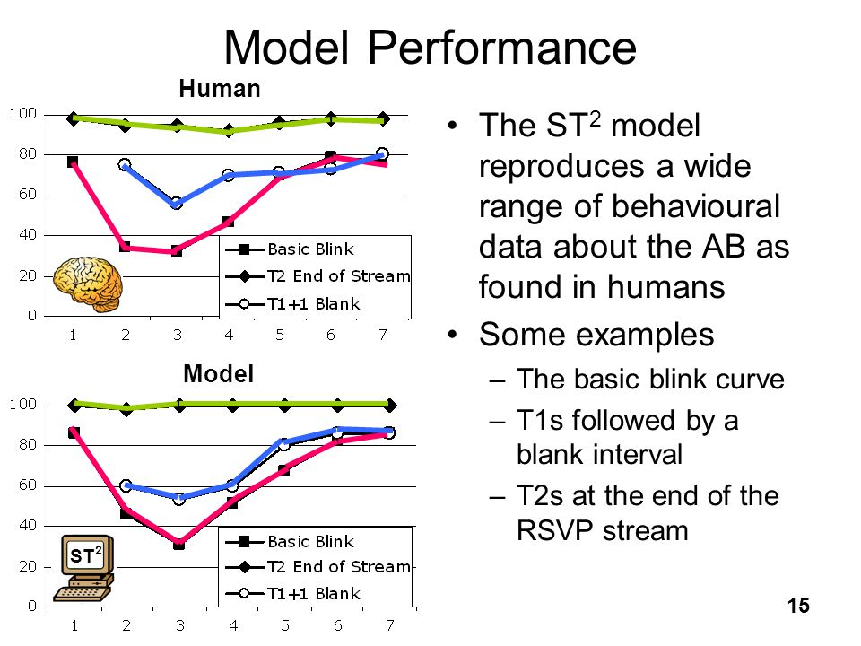 Model Performance Human. The ST2 model reproduces a wide range of behavioural data about the AB as found in humans.