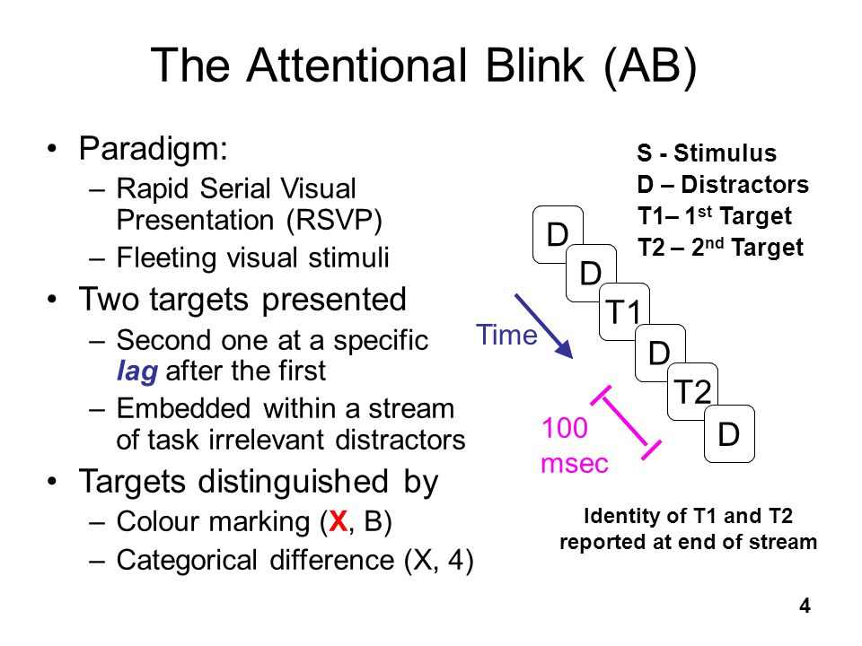The Attentional Blink (AB)