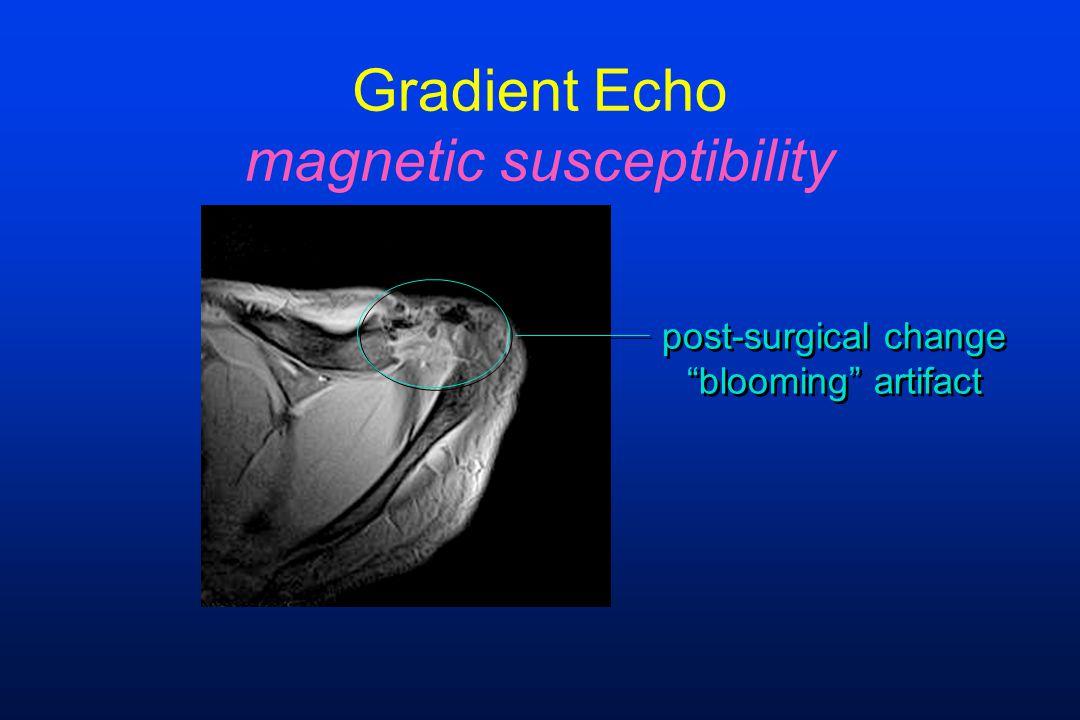 Gradient Echo magnetic susceptibility