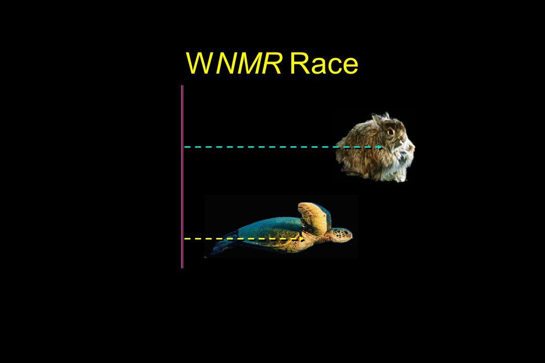WNMR Race