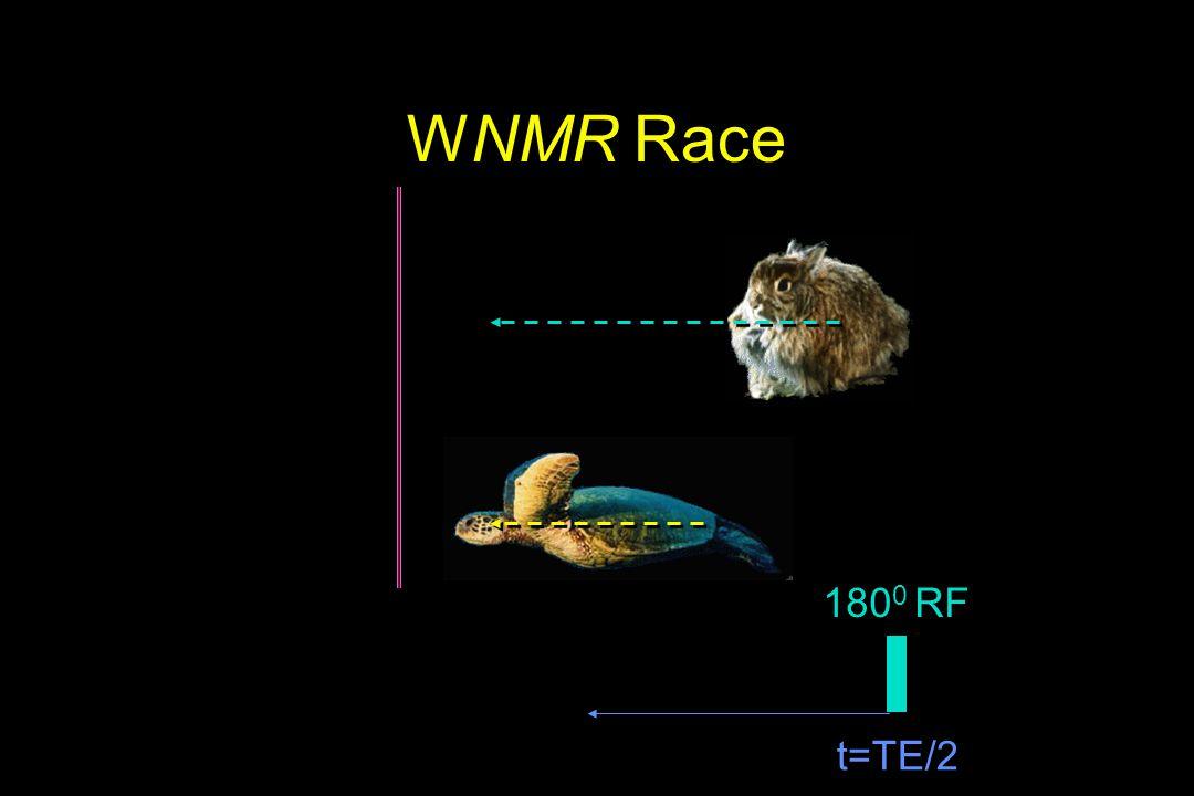 WNMR Race 1800 RF t=TE/2