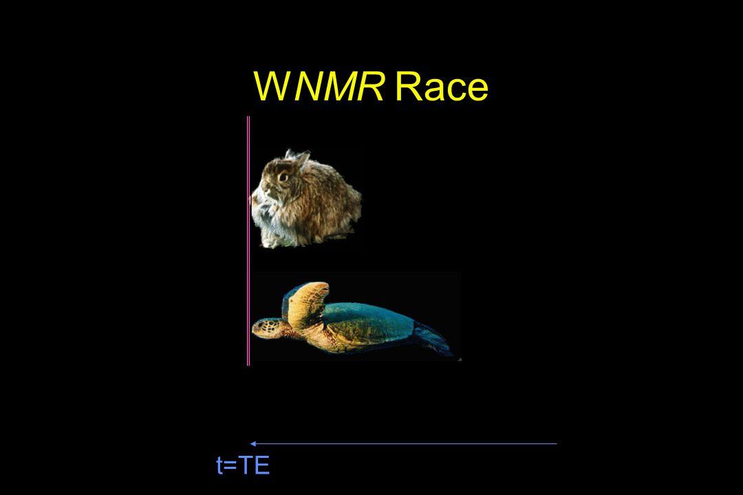 WNMR Race t=TE