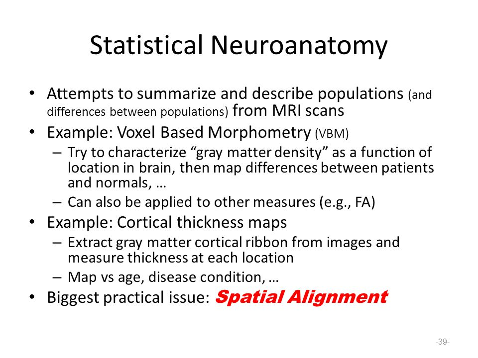 Statistical Neuroanatomy