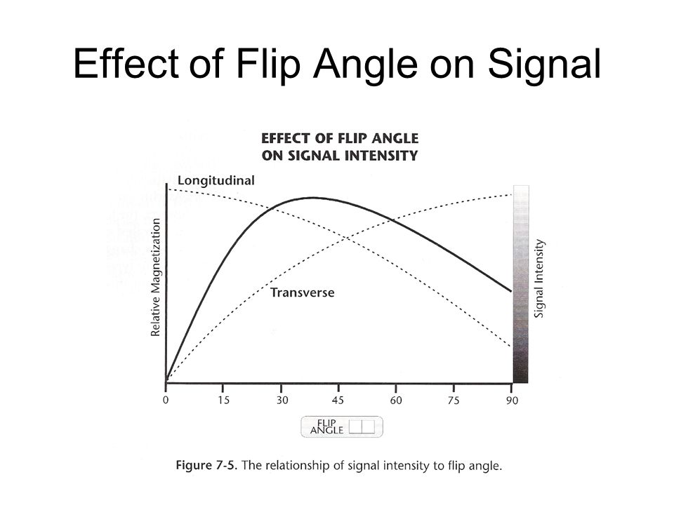 Effect of Flip Angle on Signal