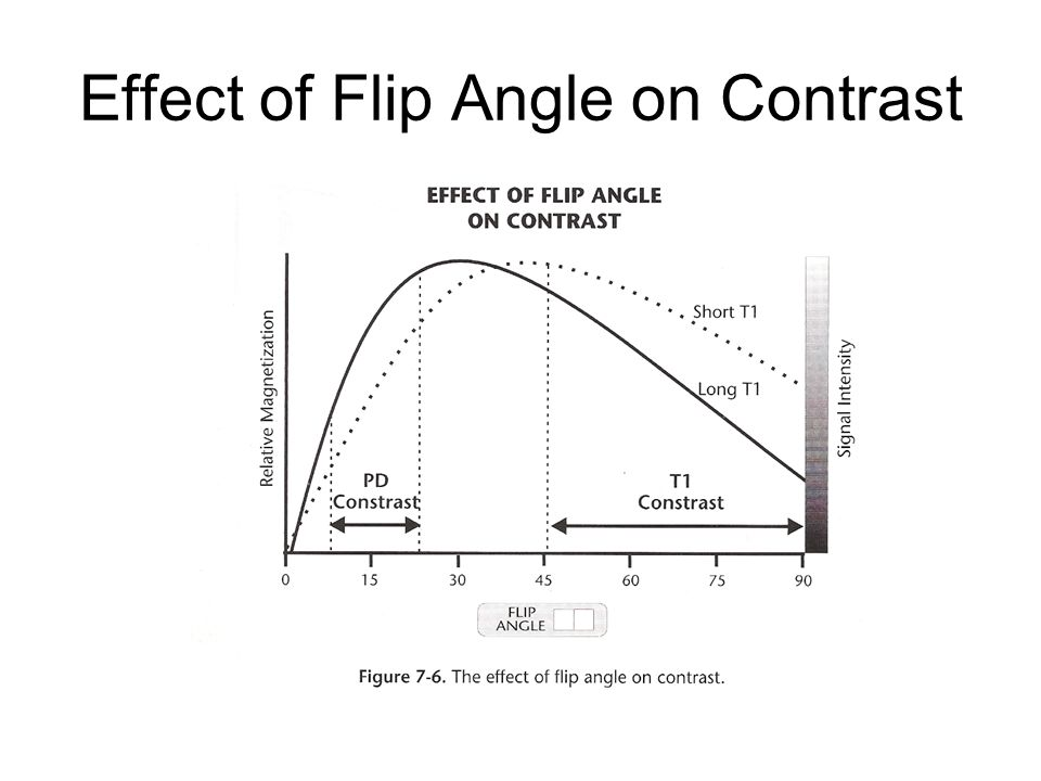 Effect of Flip Angle on Contrast
